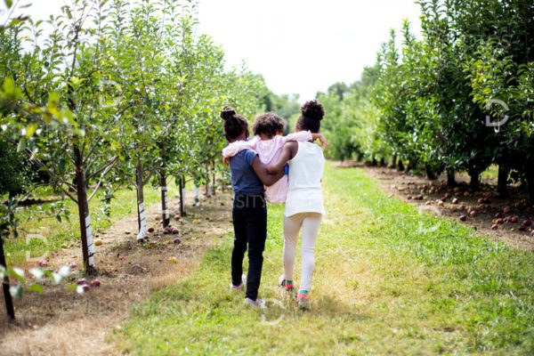 Young black friends walking through orchard farm